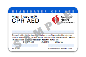 advanced cardiovascular life support provider manual professional