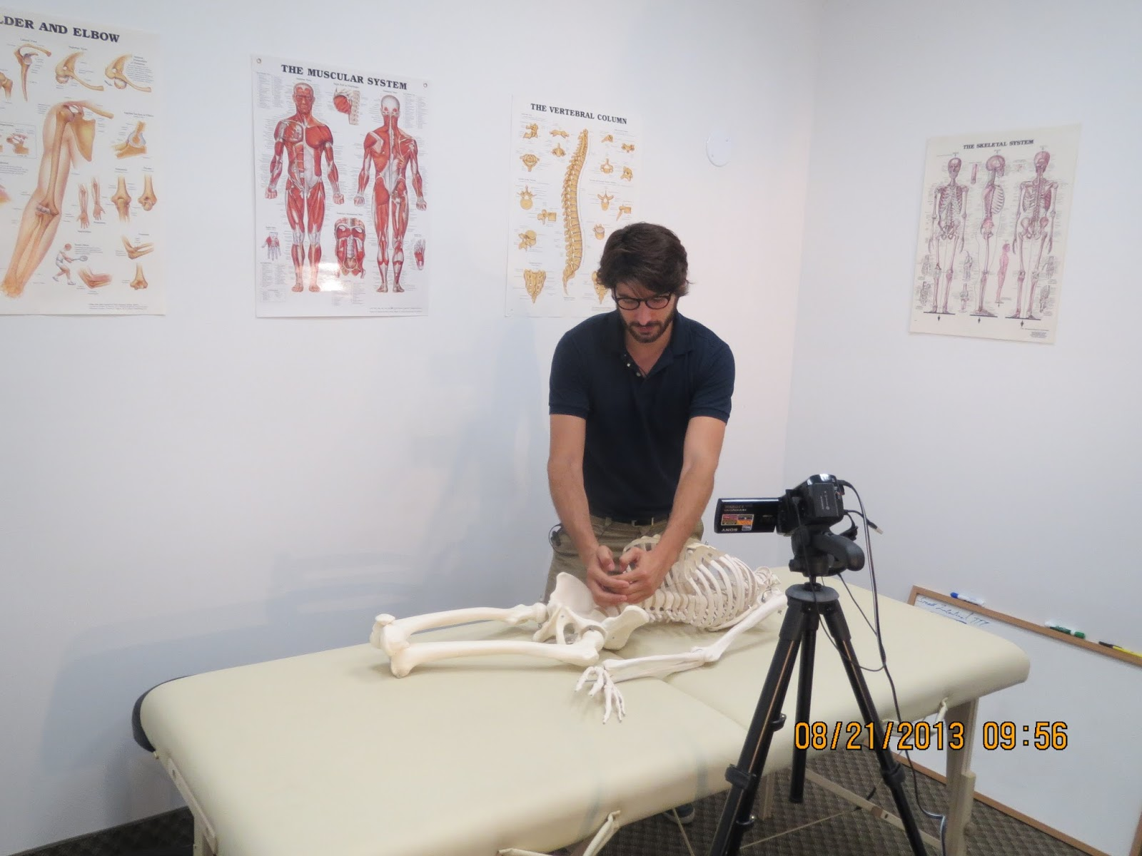 osteopathic manual practitioner vacancies toronto
