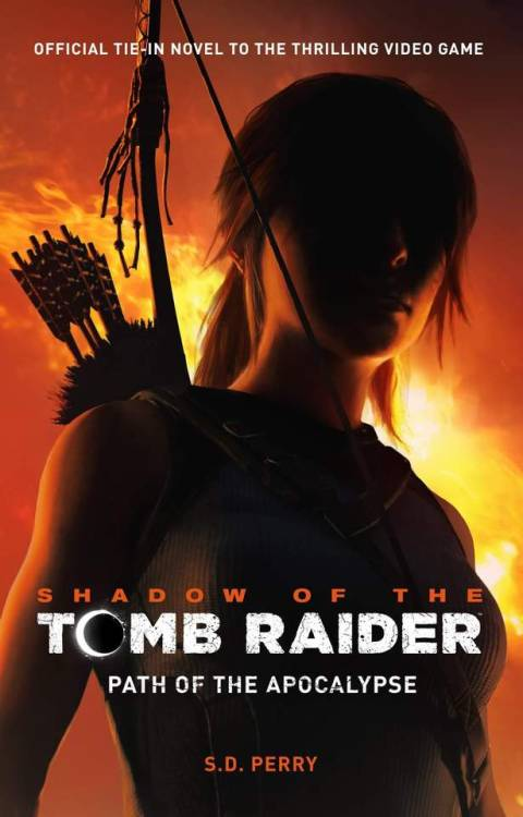 tomb raider 6 angel of darkness manual