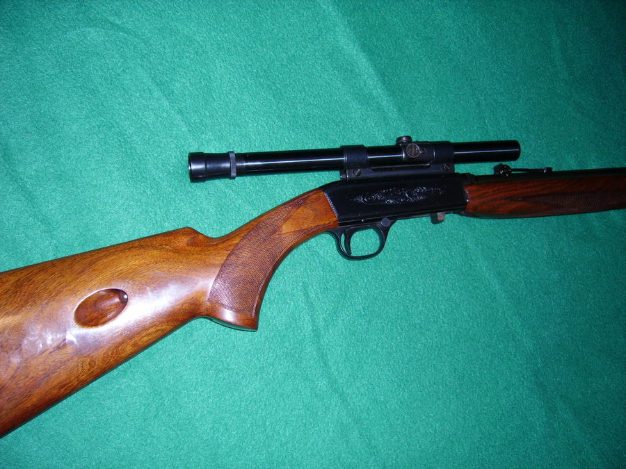 winchester 22l or lr model 190 manual