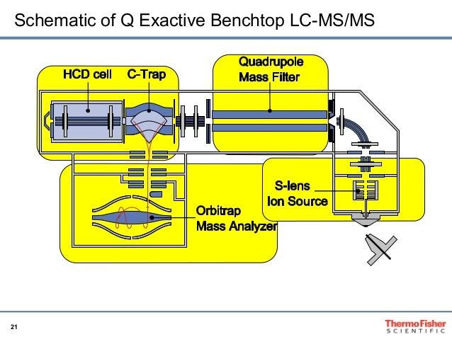 thermo scientific q exactive user manual